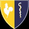 Gruppo Bonvicini